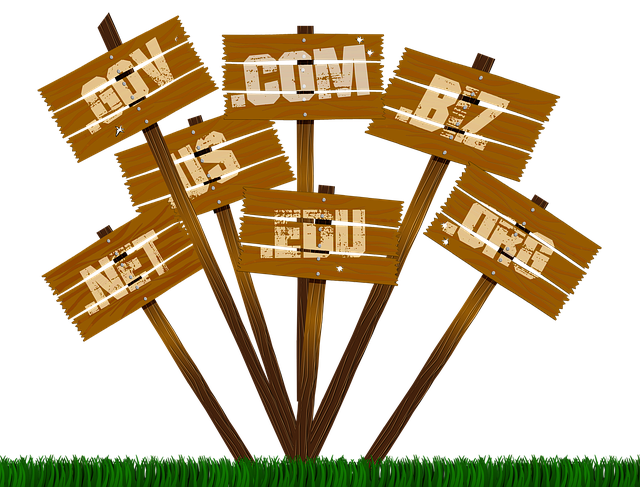 free domain-names-offered