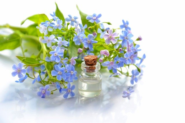 essential oil business name ideas featured image